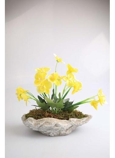 Kibrithane Çiçek Yapay Çiçek Beton Saksı Mini Sarı Kumaş Orkide Kc00200792 Renkli